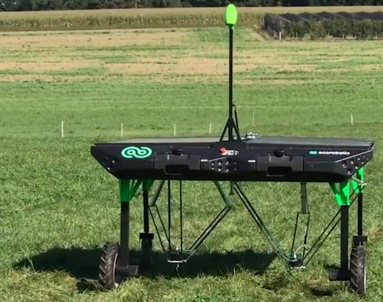 加拿大的除草机器人